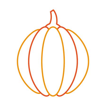 カボチャの感謝祭のディナーの装飾お祝いベクトル イラスト 写真素材 - 88456274