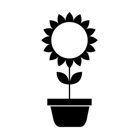 potted sunflower natural plant petal decoration vector illustration