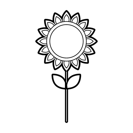 sunflower natural plant petal decoration vector illustration Çizim