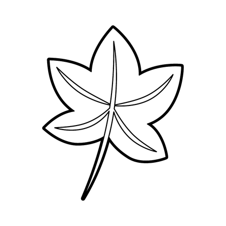 autumn leaf maple foliage flora decoration vector illustration