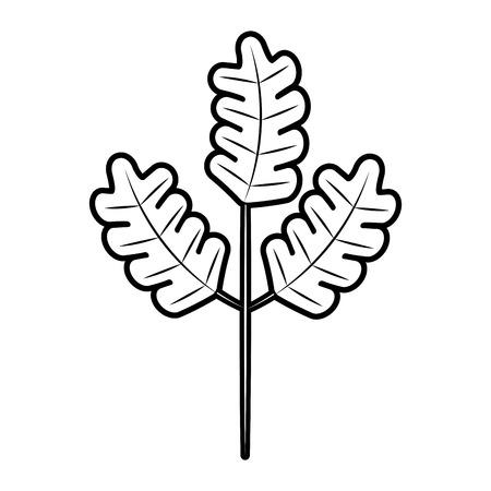 autumn branch of tree and leaves seasonal vector illustration Ilustração