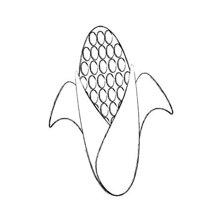 sweet corn cartoon thanksgiving day symbol vector illustration Illustration
