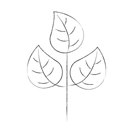 紅葉は自然の植物の葉ベクター イラスト 写真素材 - 88456490