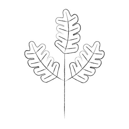 秋の葉自然の植物の葉ベクトルイラスト