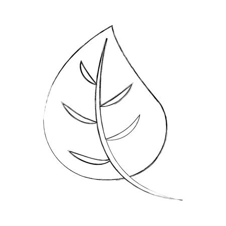 autumn leaf foliage flora decoration vector illustration Illusztráció