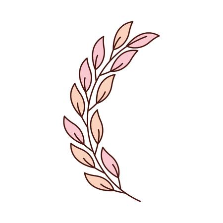 laurel decoration branch competition image vector illustration