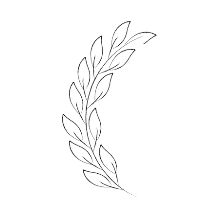 laurel decoration branch ornament image vector illustration
