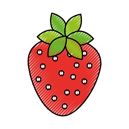sweet strawberry fruit fresh raw food healthy vector illustration Illusztráció