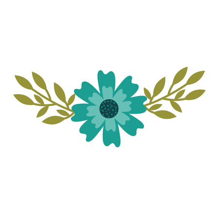 An aster flower natural petal leaves decoration vector illustration