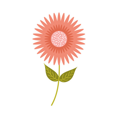 A dahlia flower floral ornament garden petal leaves stem vector illustration Ilustração