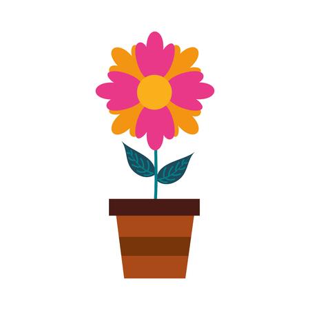 A potted flower plant decoration botanical flora vector illustration