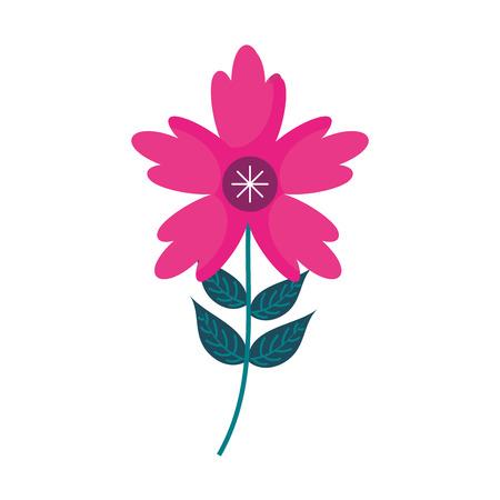 Een bloemblaadje van de krokusbloem verlaat vectorillustratie van het stam de natuurlijke ornament Stock Illustratie