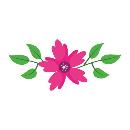 A crocus flower leaves natural decoration ornament vector illustration Иллюстрация