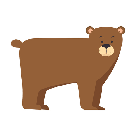 A wild grizzly bear icon vector illustration design