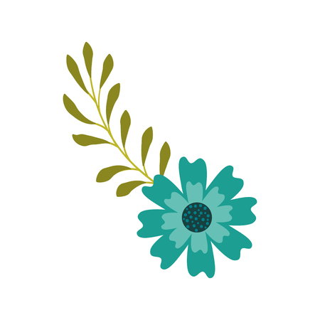 An aster flower branch leaves natural petal decoration vector illustration