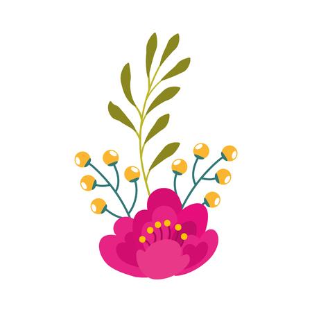 A pink flower leaves branch berries natural vector illustration