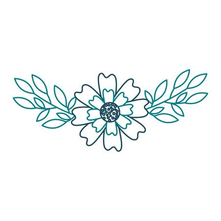An aster flower leaves natural petal decoration image vector illustration Illustration