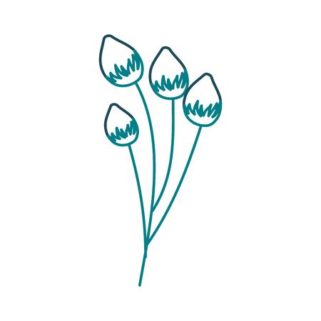 Een bloemknop bloemen vectorillustratie van de bloem gevoelige bloei