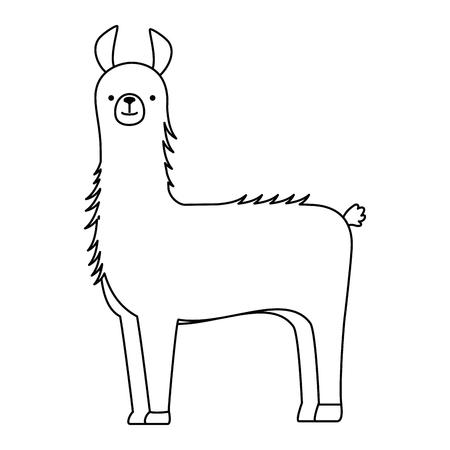 페루 라마 절연 아이콘 벡터 일러스트 디자인