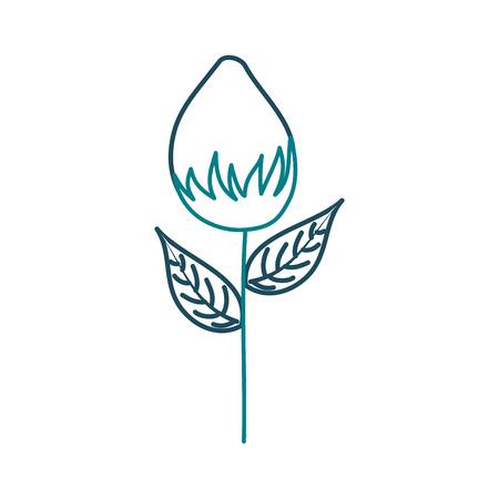 A flower garden growth bud natural image vector illustration Illustration
