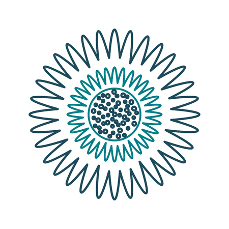 A dahlia flower floral ornament garden image vector illustration