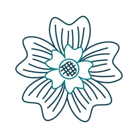 A periwinkle flower adornment nature plant vector illustration Illustration