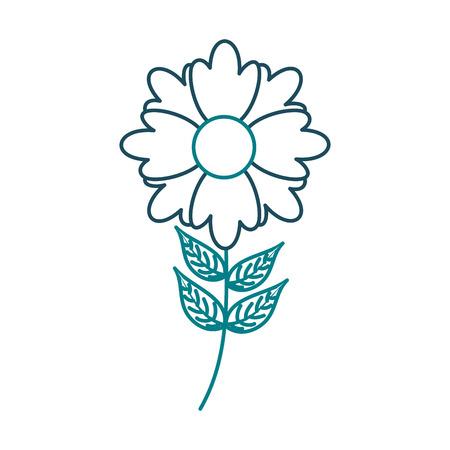 A flower plant decoration botanical petal leaves stem vector illustration