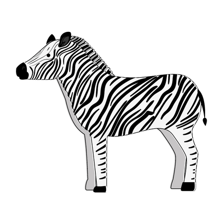 A wild zebra isolated icon vector illustration design Фото со стока - 88618686