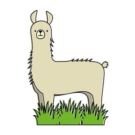 A peruvian llama in jungle vector illustration design