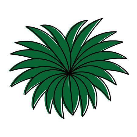 Un design exotique jungle brousse icône vector illustration Banque d'images - 88618937
