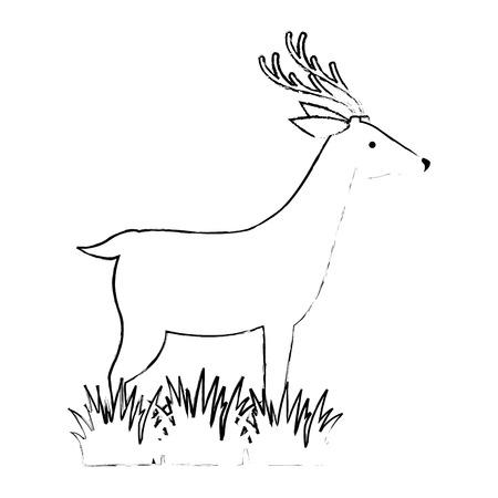 Een wild hert isoleerde ontwerp van de pictogram vectorillustratie Stockfoto - 88618942