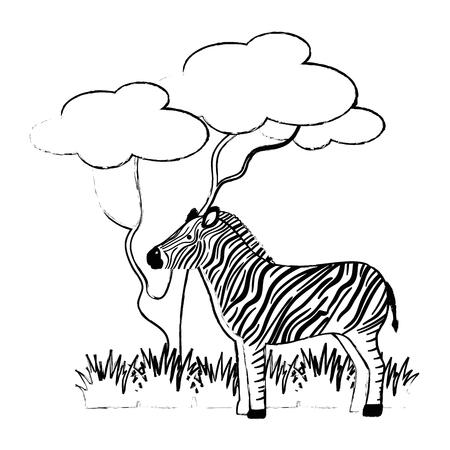 Ein wilder Zebra lokalisierte Ikonenvektor-Illustrationsdesign Standard-Bild - 88618944