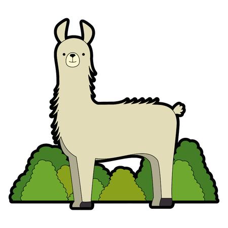 peruvian llama in jungle vector illustration design Illusztráció