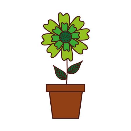 potted aster flower natural petal decoration image vector illustration Illustration