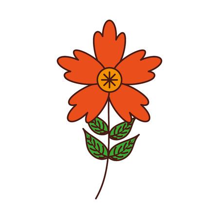 krokus bloem bloemblad bladeren stengel natuurlijke ornament vectorillustratie
