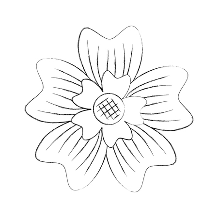 periwinkle flower adornment nature plant vector illustration Ilustração