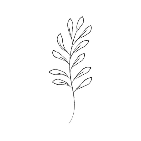 branch plant with leaves natural foliage garden vector illustration