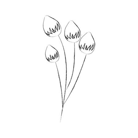 flower delicate bloom bud floral vector illustration