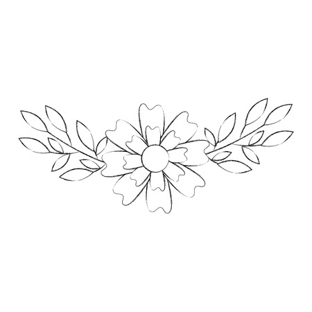 aster flower natural petal leaves decoration vector illustration 版權商用圖片 - 88796992