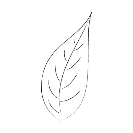 leaf natural foliage botanical vegetation icon vector illustration Ilustração