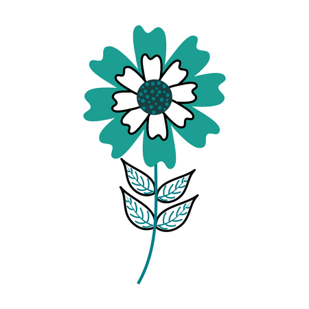 aster flower natural petal leaves stem vector illustration 版權商用圖片 - 88838995