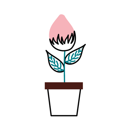 potted flower natural bulb growth plant decoration vector illustration