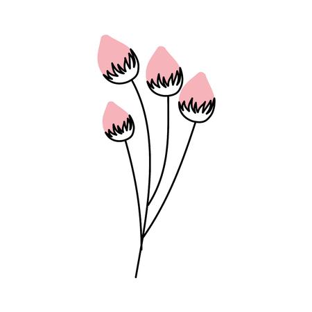 flower delicate bloom bub floral vector illustration Ilustração