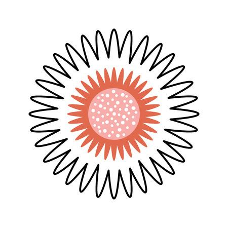 dahlia flower floral ornament garden image vector illustration Çizim