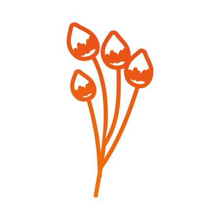 bloem delicate bloei bub floral vectorillustratie