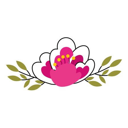 cherry flower nature delicate bloom leaves decoration vector illustration