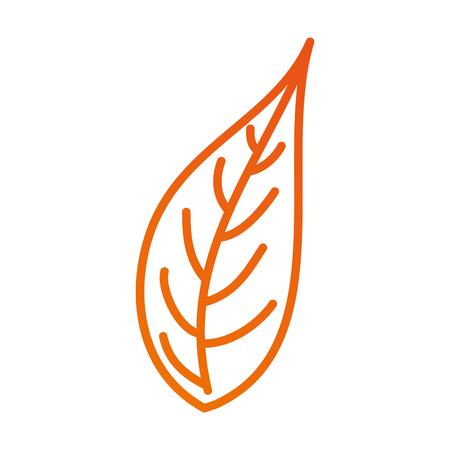 leaf natural foliage botanical vegetation icon vector illustration Banco de Imagens