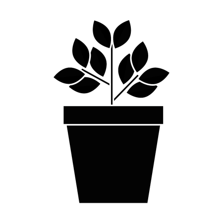 house plant in pot vector illustration design Ilustração