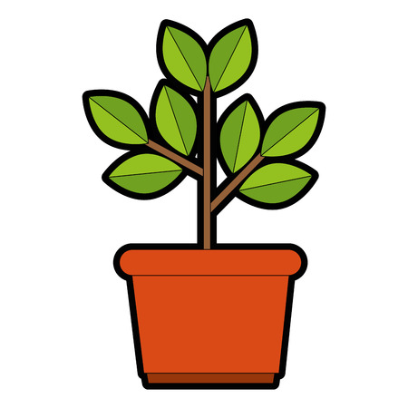 house plant in pot vector illustration design Ilustrace