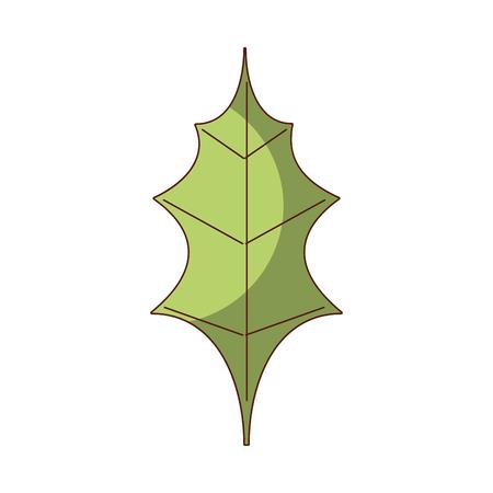 Leaf Christmas decoration nature element icon vector illustration.